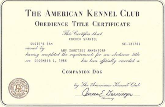 OTCH certificate