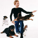ammen_3_dogs