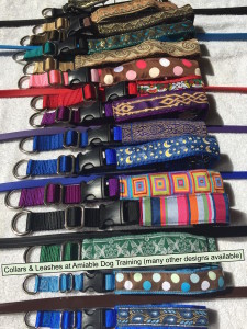 collars and leashs from dogclass.com