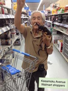 Chihuahua, Walmart shopper
