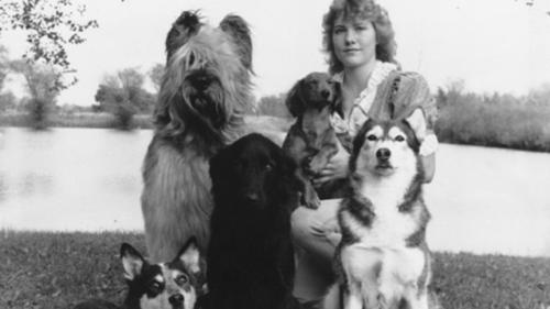 Amy Ammen's Obedience Dogs, 1982